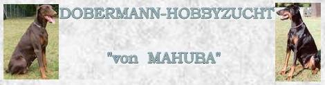 DOBERMANN-HOBBYZUCHT